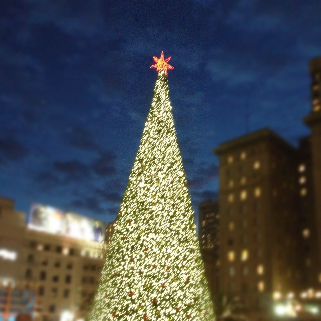 chrismas tree union square san francisco