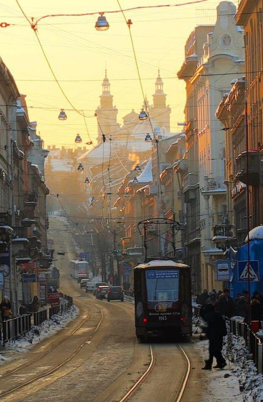 tram on streets of lviv